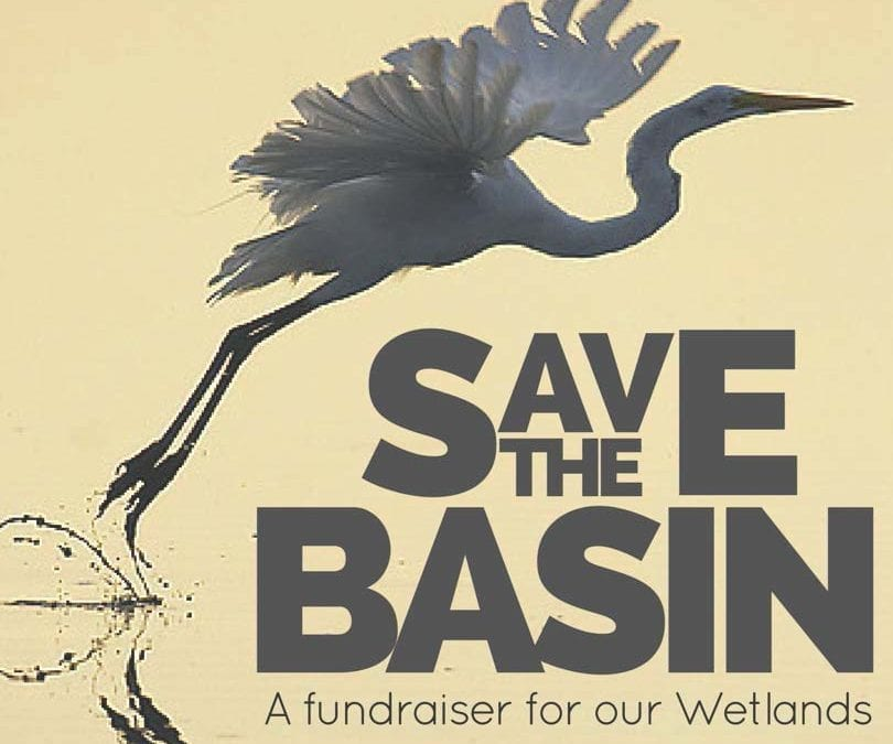 6th Annual Save The Basin