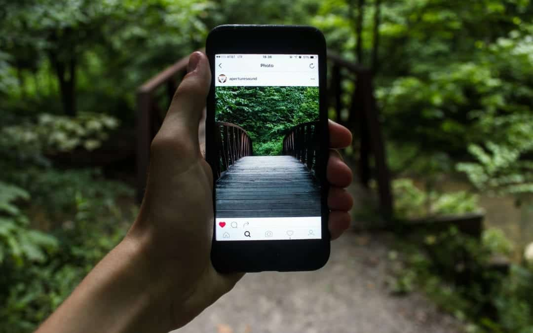 How The Right Social Media Strategy Can Transform Your Business
